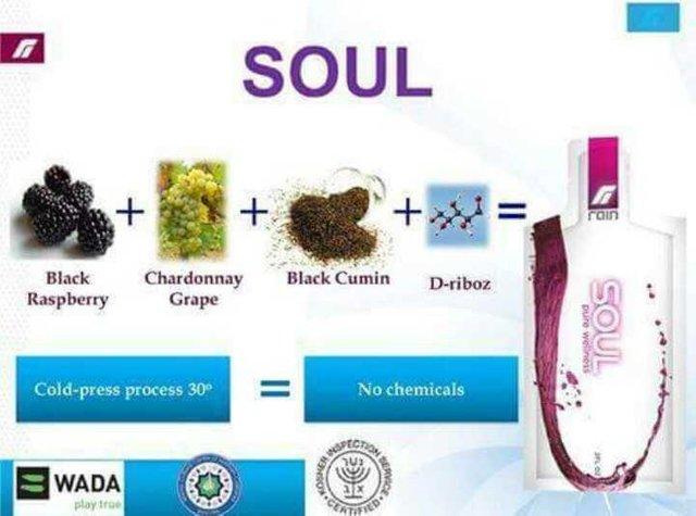 rain soul ingredients